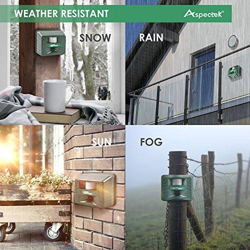Yard Sentinel, Outdoor Electronic Pest Animal Ultrasonic Repeller, Animal Control, Pest Control, Cat Repellent, Dog Repellent, Deer Repellent, Mice Repellent, Bird Repellent