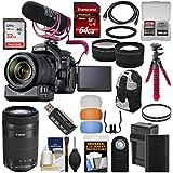 Canon EOS 80D Wi-Fi Digital SLR Camera & 18-135mm is Video Creator Kit + 55-250mm is Lens + PZ-E1 Adapter + Mic + 2 Cards + Battery + Tripod + Case Kit