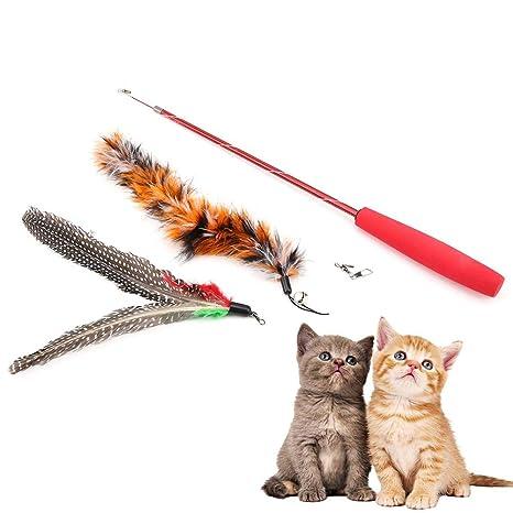 Teaser Ejercicio para Gato Gatito de Mascota de Fit for Life Multi Cat