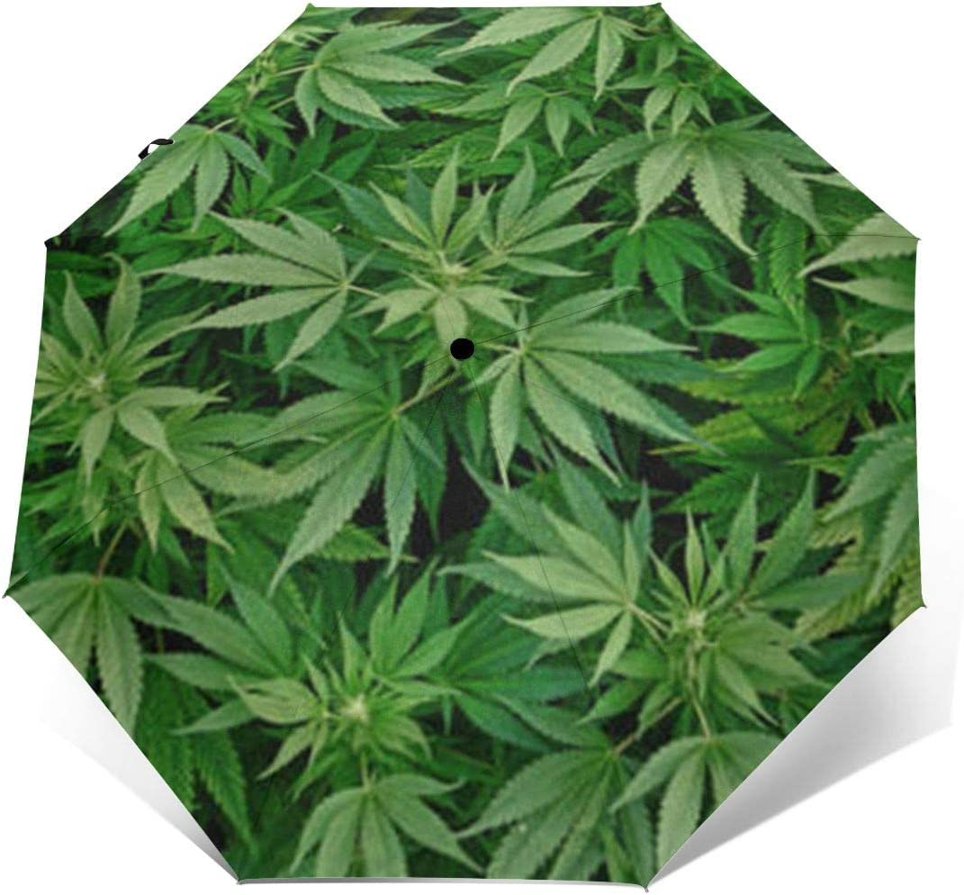 Weed Marijuana Leaf Automatic Tri-Fold Umbrella Parasol Sun Umbrella Sunshade