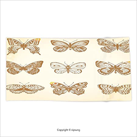 Butterfly wings all in beige on soft creme background