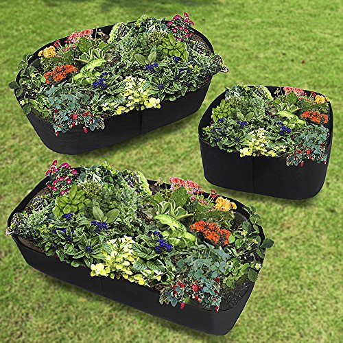 Xnferty Fabric Raised Garden Bed, 2x2 Feet Square Breathable Planting Container Grow Bag Planter Pot for Plants, Flowers, Vegetables (Black) by Xnferty (Image #6)