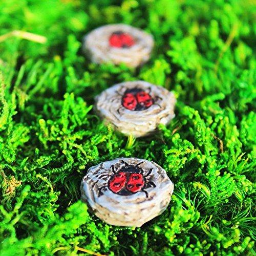 Miniature Fairy Garden LADYBUG STEPPING STONES, SET OF 3 (NIB) - My Mini Garden Dollhouse Accessories for Outdoor or House Decor ()