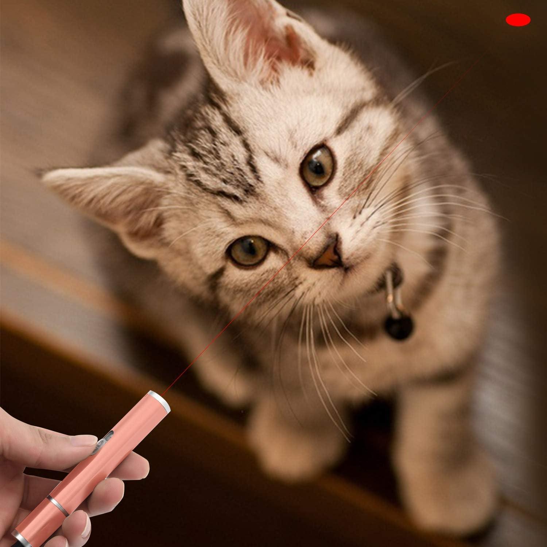 BiuCat C6 3 in 1 Gatos Puntero LED Juguetes interactivos, Mini Linterna + Luz roja + Luz Ultravioleta, Recargables por USB, Perro Entrenamiento de Mascotas (Rosa): Amazon.es: Productos para mascotas