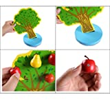 TelPal Wooden Toys Magnetic Apple Tree Montessori