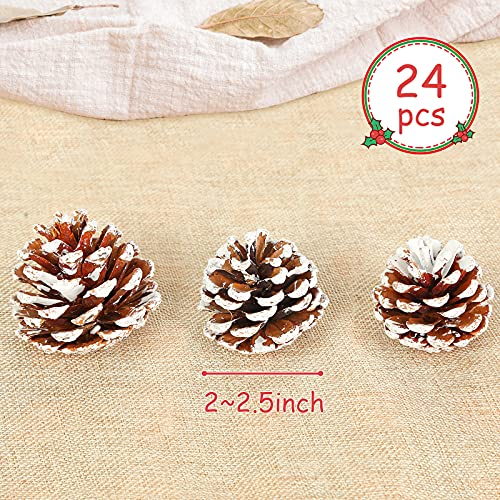 JOHOUSE 24PCS White Pine Cones , Snow PineCones Christmas Pine Cones Natural Pine Cones for Autumn and Winter Decor Christmas Decorations
