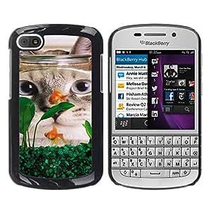 American Shorthair Curl Fish Funny Cat - Metal de aluminio y de plástico duro Caja del teléfono - Negro - BlackBerry Q10