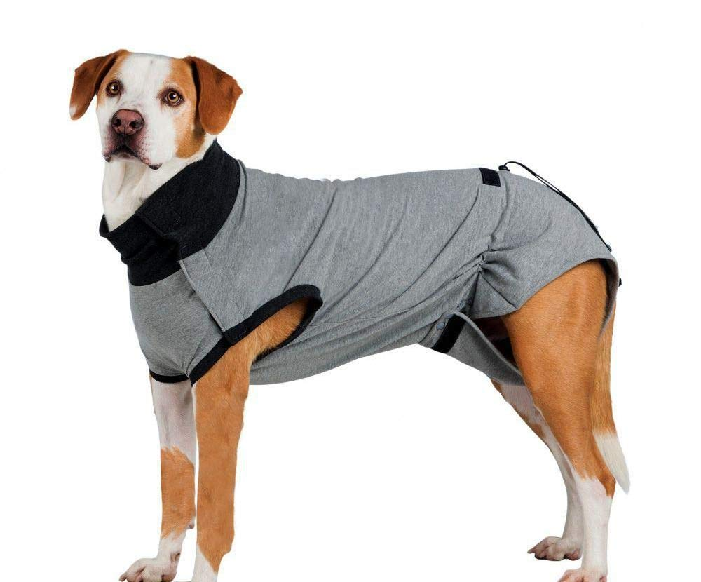 Protective Suit for Body After Surgery L 55 cm Gray, T-Shirts, Sweatshirts, Clothes, Shoes, Rehabilitation Aids and Muzzles, Dogs by Czech Beads Exclusive