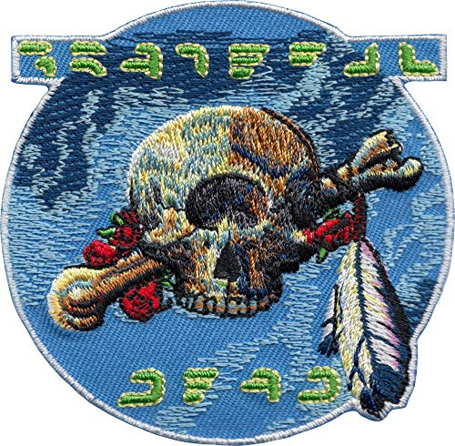 CD-2 Grateful Dead Cyclops Skull Bones Tribal Feather Embroidered patch p1801, 3