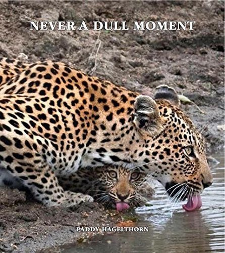 Download Never A Dull Moment pdf