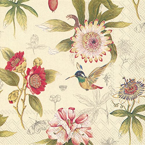 Ideal Home Range 20-Count 3-Ply Paper Cocktail Napkins, Cream Hummingbird Blossoms