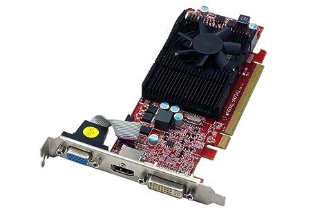 VisionTek 900252 ATI Radeon HD4650 1GB - Tarjeta gráfica (Activo ...