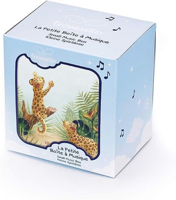 TrouSSELIER – Caja para tesoros y joyas musicales – Ideal regalo para niños – Música de la Bella de madera dormida de chaikovsky – Color verde: Amazon.es: Bebé