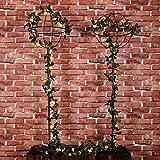 "2 Packs Garden Obelisk Metal Trellis Flower Support for Climbing Vines and Plants, 63"" x"