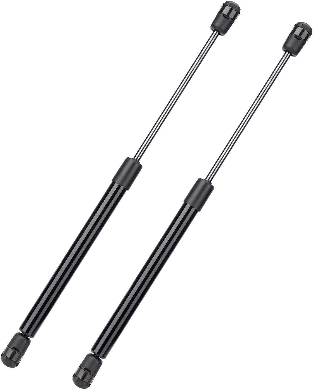 2 Pack Front and Rear Trunk Hood Lift Struts Kit Supports for Tesla Model 3,Front