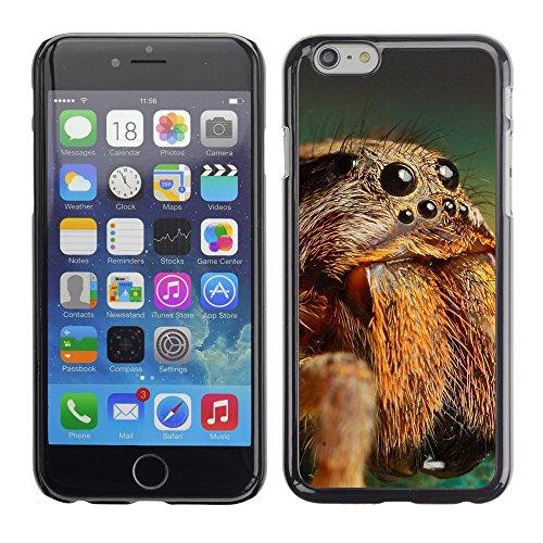 "Premio Sottile Slim Cassa Custodia Case Cover Shell // V00003905 tarentule spider // Apple iPhone 6 6S 6G PLUS 5.5"""