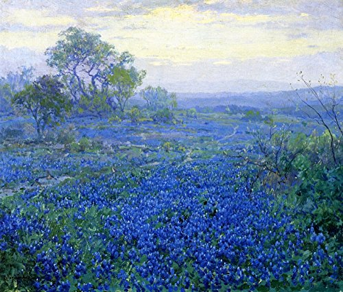 The Museum Outlet - A Cloudy Day, Bluebonnets near San Antonio, Texas, 1918 - Poster Print Online Buy (40 X 50 - San Outlets Antonio Shopping