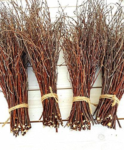 - 200 pcs. Birch Branches, Natural Birch Twigs, Birch Branches centerpieces, Decorative Birch, Birch Branches for Crafts, Set of 4 Bundles