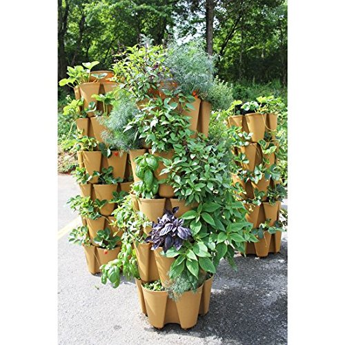 HUGE GreenStalk 5 Tier Vertical Garden Planter w/ Patented Internal Watering System Great for Growing a Variety of Strawberries, Vegetables, Herbs, & Flowers on a Balcony or Deck (Beautiful Black) by Greenstalk (Image #1)