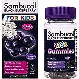 Sambucol Black Elderberry Syrup for Kids, 7.8 Ounce Bottle & Kids Gummies 30 Count Bundle, 2 Count