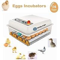 S SMAUTOP Incubadora de Huevos 16 Huevos Máquina
