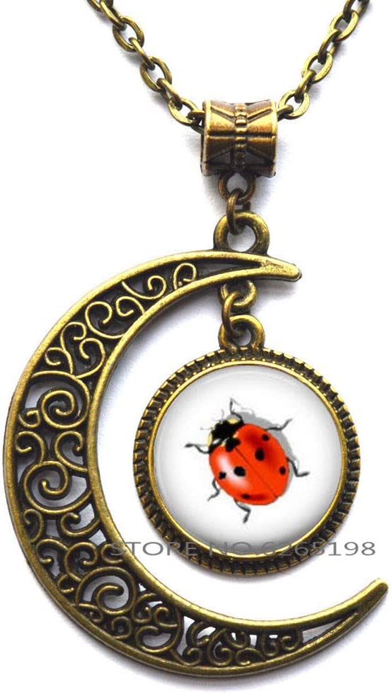 Ladybug Necklace Ladybird Jewelry Ladybird Charm Gift Ladybug Gifts Woman Necklace,N249 Lady Bug Necklace