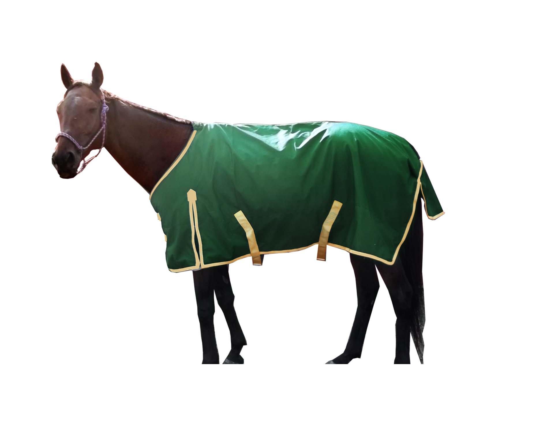 Derby Originals Deluxe Series 600D Ripstop Waterproof Medium Weight Winter Turnout Horse Blanket by Derby Originals (Image #2)