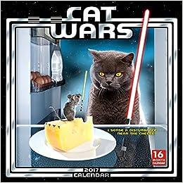 cat wars 2017 wall calendar sellers publishing 9781416243311 books. Black Bedroom Furniture Sets. Home Design Ideas