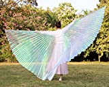Dance Fairy Colorful Belly Dance Isis Wings with