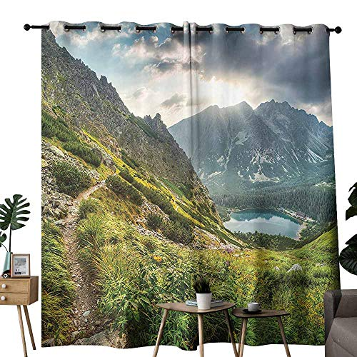 (Apartment Decor Collection Curtain for Kids Mountain by The Lake with Fairy Dark Cloudy Sky Spring Dream Spot on Earth Photo Privacy Protection W84 x L108 Green White Blue)