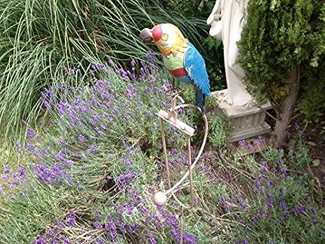 Dondolo pappagallo ornamento in metallo colorato per giardino