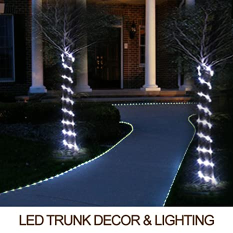 Amazon bright zeal 15 ft 60 leds rope lights outdoor battery bright zeal 15 ft 60 leds rope lights outdoor battery powered with timer waterproof aloadofball Choice Image