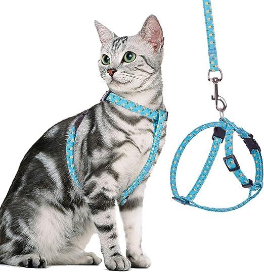 BINGPET - Arnés para gato y correa a prueba de escape, ajustable y suave, arnés para caminar