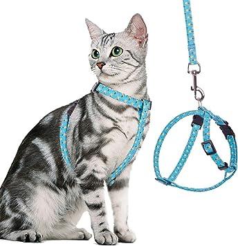 BINGPET - Arnés para gato y correa a prueba de escape, ajustable y ...
