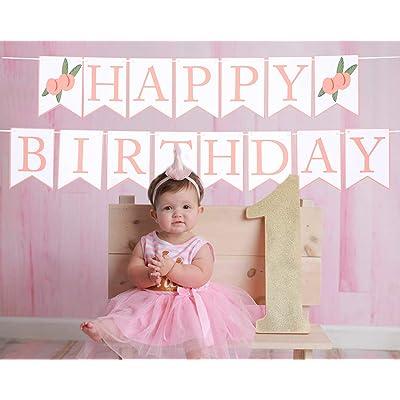 Tutu Pastel Tutu Princess Tutu Birthday Tutu First Birthday Tutu Winter Wonderland Tutu Baby Tutu Tutu Cake Smash Tutu Toddler Tutu