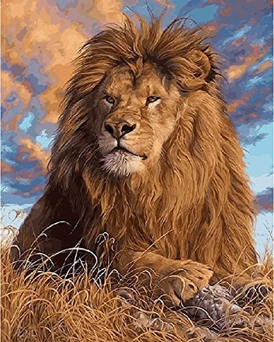 JynXos Paint By Number No Mixing / No Blending Linen Canvas DIY Painting -?Lion 16x20 Inch (Wooden Framed)