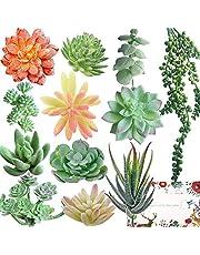 12 Artificial Succulents Faux Succulent Plants and Flowers