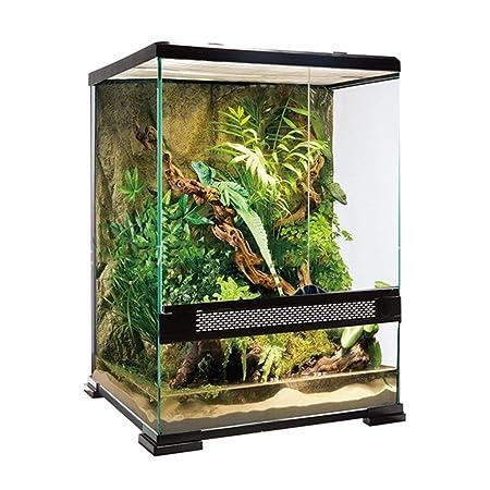 Jaula de reptiles de vidrio, lagarto, camaleón, tortuga, serpiente ...