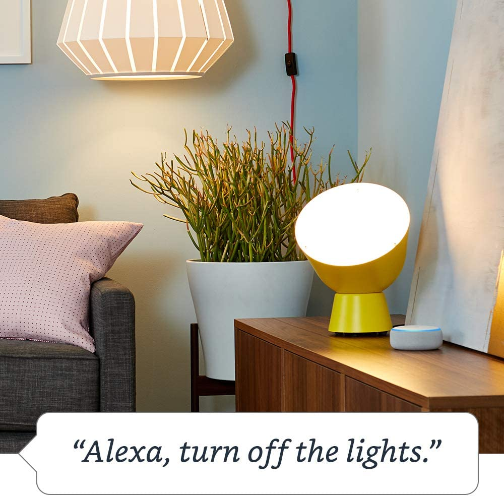 Smart Plug, works with Alexa – A Certified for Humans Device