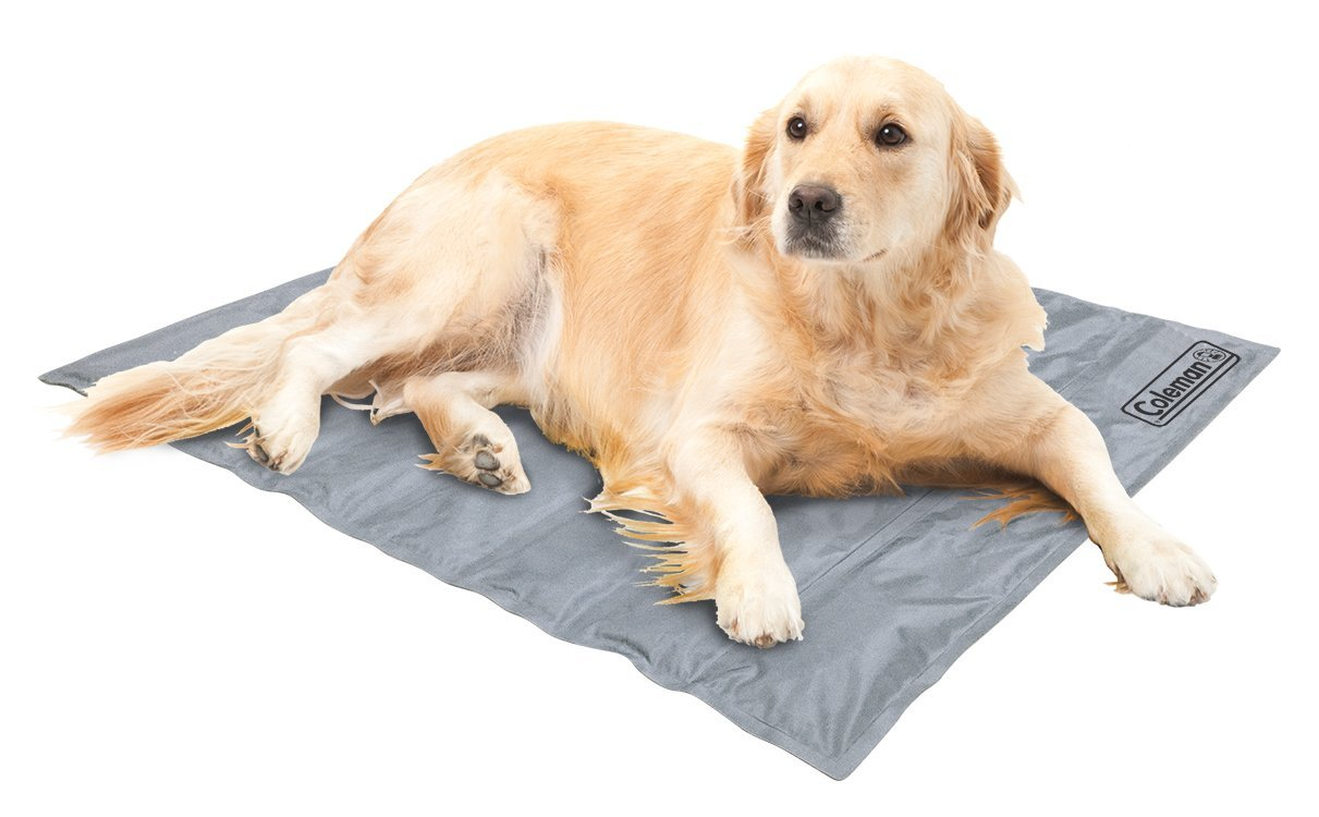 Comfort Cooling Gel Pet Pad Mat in Large 20''x36'', for Large Pets (Silver)