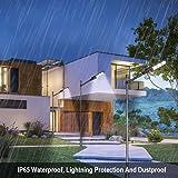 LOVUS 60W Solar Street Lamp Waterproof IP65