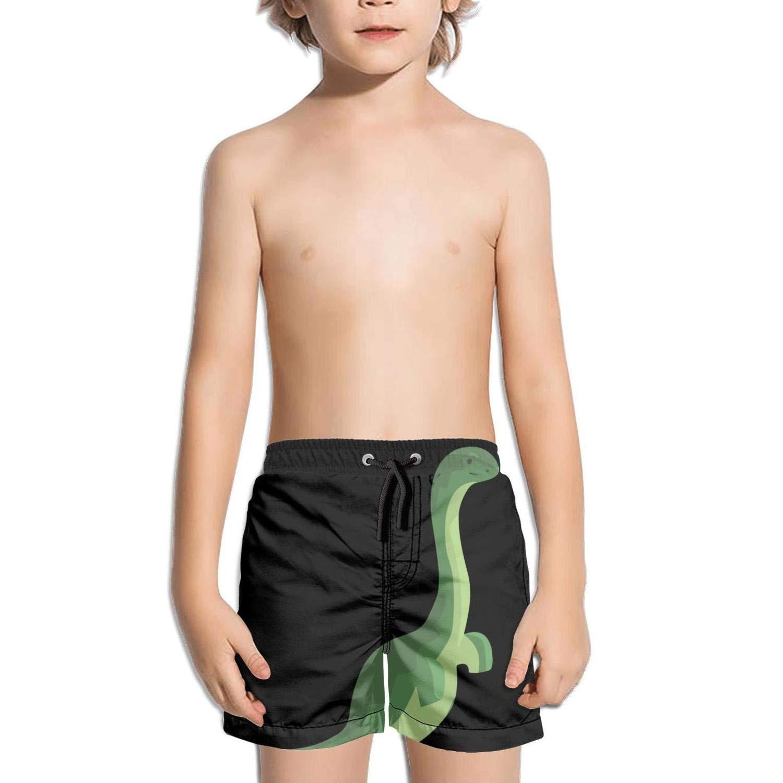 Ouxioaz Boys Swim Trunk Cute Triceratops Dinosaur Gift Beach Board Shorts