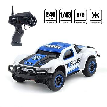 1/43 Mini RC Violent Buggy 4CH 20KM / H Radio de coche de ...