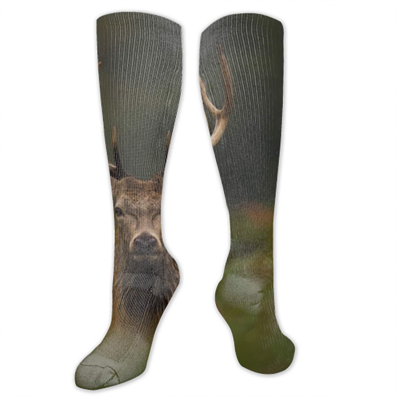 Womens Girls Novelty Knee High Socks Moonwolves School Boot Socks