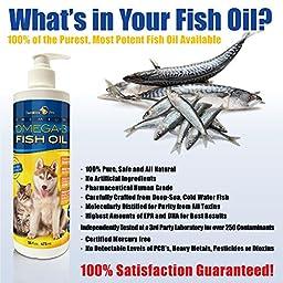 TerraMax Pro Liquid Omega-3 Fish Oil for Dogs and Cats, 16 Fl. Oz.