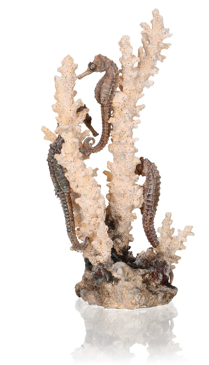 biOrb Seahorses On Coral Sculpture Medium Natural by biOrb