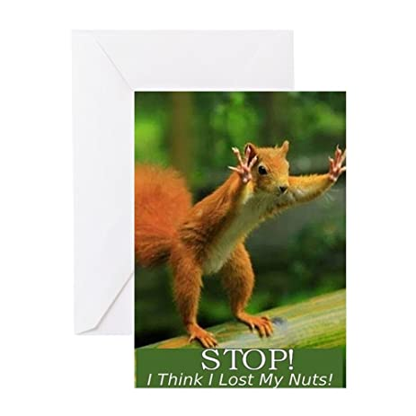 Amazon Cafepress Squirrel Lost His Nuts 2 Greeting Card