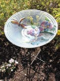 CC Outdoor Living Hand Painted Glass Dragonfly and Flower Spring Outdoor Garden Bird Bath, 21'', Off/White