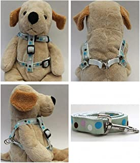 "product image for Diva-Dog 'Metro' Custom 5/8"" Wide Dog Step-in Harness with Plain or Engraved Buckle, Matching Leash Available - Teacup, XS/S"