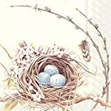 Boston International 20 Count 3-Ply Paper Cocktail Napkins, Birds Nest with Eggs